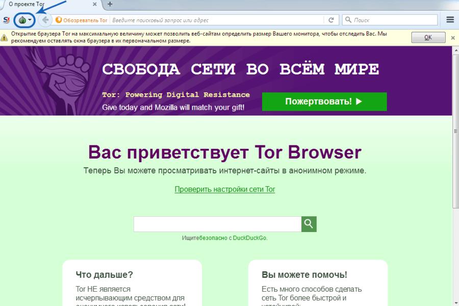 поисковики длЯ тор браузера gydra
