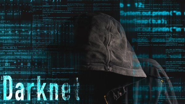 Сколько стоит цифровая жизнь пользователя в Dark Net
