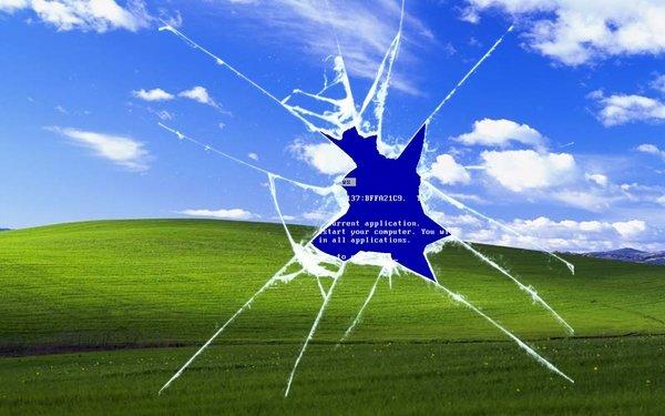 32% компаний до сих пор используют Windows XP